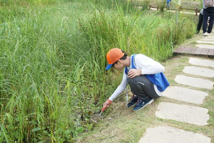 불로초 팀의 이동원 학생이 국립생태원 에코리움 앞 인공습지에서 뜰채로 수서곤충을 떠올리고 있다. - (주)동아사이언스 제공